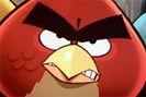 foto: rovio