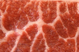 Fleisch ist erlaubt, auch Eier und Kse. Die Aufnahme von Kohlenhydraten soll bei &quot;Low-Carb&quot;-Diten hingegen stark eingeschrnkt werden.