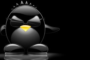 Das Linux-Maskottchen Tux.