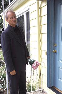 """Jetzt sind wir einmal gespannt, was oder wer da heraus-kommt: Jim Jarmuschs Komödie """"Broken Flowers"""" mit Bill Murray startet diese Woche in Österreich."""