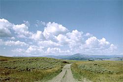 Der Blacktail Plateau Drive im Yellowstone Nationalpark. Die Begegnung mit einem Büffel ist hier sehr wahrscheinlich.
