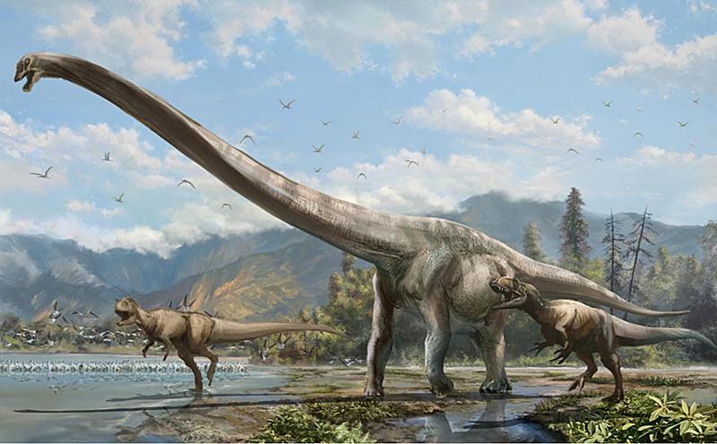Dinosaurier mit extrem langem Hals ausgegraben  Natur
