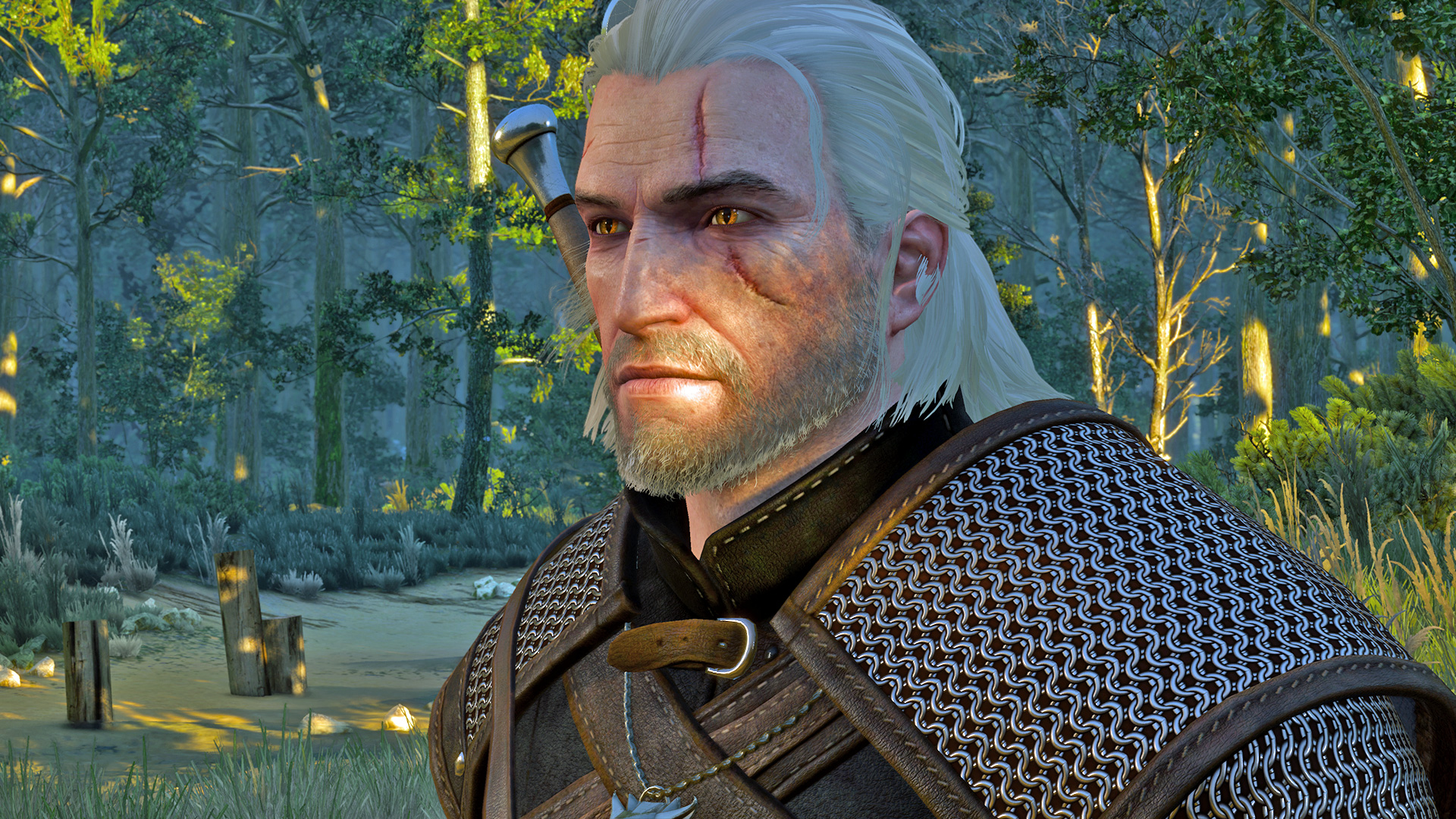 Witcher frisur andern