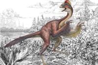 illu.: mark a. klingler, carnegie museum of natural history