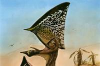 illustration: maurilio oliveira/museu nacional-ufrj
