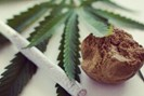 foto: getyourguide/coffeeshops and cannabis walking tour