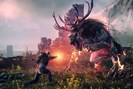 foto: the witcher 3
