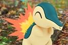 foto: the pokémon company