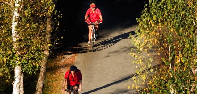 foto: www.der-plankenauer.at