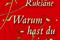cover: ammann