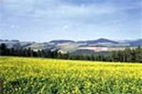 foto: österreich werbung/mallaun