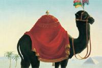 foto: zum schwarzen kameel