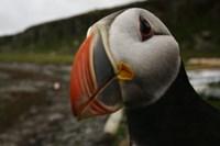 foto: www.visiticeland.com