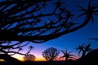 foto: dirk bleyer
