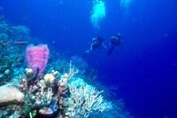 foto: belize tourism/tony rath/tonyrath.com