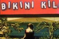 cover: bikini kill/pussy whipped
