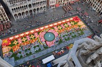 foto: flower carpet