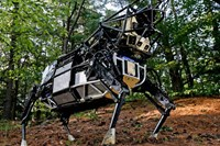 foto: boston dynamics
