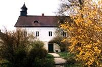 foto: oberösterreichisches landesmuseum / ecker