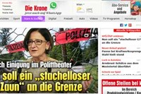 foto: screenshot / krone.at