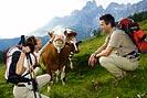 foto: österreich werbung / himsl
