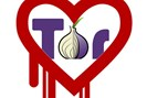 grafik: tor / heartbleed