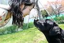 foto: mikako mikura