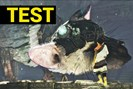 bild: the last guardian