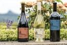 foto: king estate vinery
