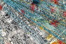 foto: forensic architecture