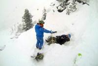 Die im Text erwähnten Sicherheitsprofis bieten Freeridern laufend Kurse, Camps und geführte Touren an; Infos beim Freeride Center Stubai, beim SAAC und beim Alpenverein. Wer am Berg in Not gerät, wählt 140, die Nummer der Bergrettung. Da jedoch viele Probleme damit haben, ihre genaue Position anzugeben, hat die Bergrettung Tirol eine App gebastelt, die beim Notruf gleich die GPS-Koordinaten mitschickt. Achtung: Auch die App funktioniert nur dort, wo es Handyempfang gibt - und das ist im freien Gelände nicht garantiert.