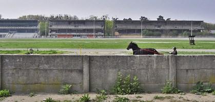 foto: derstandard.at/michael matzenberger