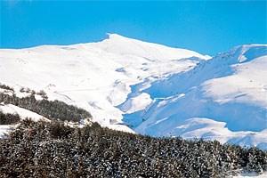 Im Windschatten der verschneiten Gipfel der Sierra Nevada wachsen, dank Mikroklima, tropische Pflanzen.