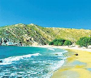 """Ganz ehrlich: Auch wenn Patmos als """"heiligste griechische Insel"""" gilt, man kommt auch wegen der Sonne und der Strände. Feinsandige gibt es allerdings nur im Osten und im Süden, jener bei der Bucht Psili Amos etwa lohnt den kleinen Fußmarsch. Einsam ist es dort zumeist, denn nur eine recht spärlich ausgestattete Taverne ist schon die ganze Infrastruktur. Ein Mietwagen (rund 60 Euro pro Tag!) ist hier absolut kein Muss, ein Moped tut es auch um rund 25 Euro pro Tag. Abgesehen davon verkehren hier Linienbusse - die nicht überall hinkommen - die einfache Fahrt kostet € 1,20."""