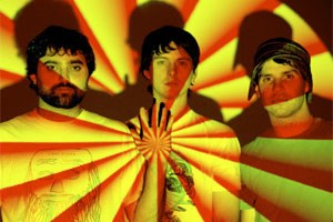 Das Animal Collective.