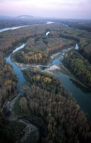Ein Ziel der Flussbaumaßnahmen ist auch die Anbindung an die Donau und dadurch die bessere Durchflutung von Seitenarmen. Im Bild: Das heutige Ergebnis eines Pilotprojekts bei Haslau, das bereits 1998 fertiggestellt wurde.
