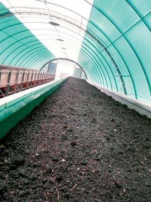 Auf der Regenwurmfarm entsteht der Bio-Humus.