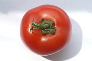 Die Tomate ist bekannt für ihre sonnenprotektive Wirkung.