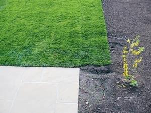 Langsam entwickelt sich der Garten. Platsch, da rollt der Rasen drüber.