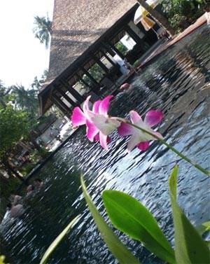 Aufenthalt in Koh Samui im Chaweng Beach Hotel, lediglich 15 Minuten vom Flughafen entfernt.