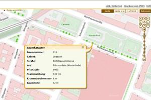 Im Online-Kataster sind alle öffentlichen Straßenbäume mit Daten über Art, Alter, Höhe und Durchmesser verzeichnet.