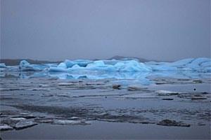 Nicht nur in den polaren Gewässern hinterlässt der durchschnittliche Temperaturanstieg seine Spuren.