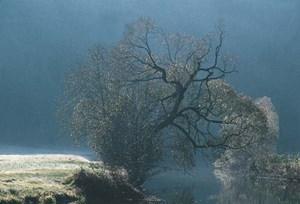 Wenn die Bäume ihr Laub verloren haben, ergeben sich immer wieder schöne Ausblicke.