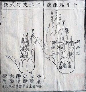 Die Hand als Merkhilfe und Orakel: In China gibt es eine jahrhundertealte Tradition, die Abschnitte der Finger mittels komplizierter Berechnungen zum Lösen praktischer Probleme zu nützen.