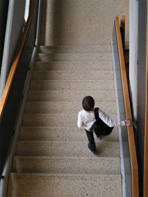 """Auf- oder Abstieg mit der Neuen Mittelschule? Im laufenden Schulversuch lernen NMS- und AHS-Schüler nach demselben AHS-Lehrplan, der Gesetzes- entwurf für die NMS sieht nun zwei Allgemein- bildungen vor: """"grundlegende"""" und """"vertiefte"""" - und """"umfassend und vertiefte"""" in der AHS."""
