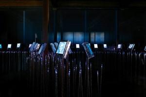 """Auf den Monitoren des """"Digital Garden"""" des Nobel-Friedenszentrums in Oslo werden alle Preisträger des Friedensnobelpreises vorgestellt."""