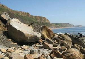 Obwohl die Jurassic Coast seit einiger Zeit zum Weltnaturerbe der UNESCO zählt, darf nach wie vor nach Fossilien gesucht werden