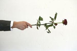 """Hohle Phrase, hohle Figuren: """"Nimmst du diese Rose?"""""""