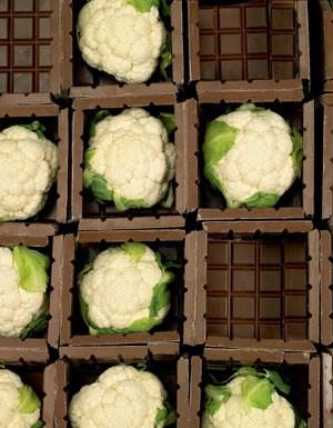 Heinz Reitbauer kann sich Karfiol mit Kakao sehr gut zu Wild vorstellen. In der spanischen Küche ist es üblich, Karfiol mit Süßem wie Rosinen zu kombinieren.