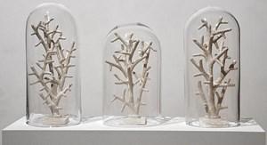 """Geordnete Schöpfung: Versteinerte Korallen, eine Arbeit von Mark Dion, gut getarnt als Fake aus Papiermaché : """"Bone Coral (phantom museum)"""", 2011"""